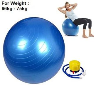 Swiss Ball Stability Ball Gym Ball Fitness Pillow Exercise