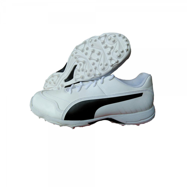 Puma EvoSpeed One8 R Cricket Shoes