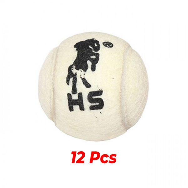 HS Loose Cricket Ball Buy Best Tennis Balls