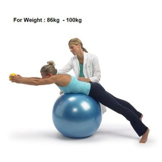 Swiss Ball Stability Ball Gym Ball Fitness Woman Pillow Exercise