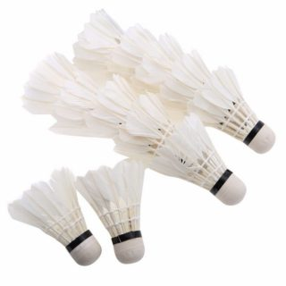 Shuttlecocks Stable & Durable Sports Training Badminton